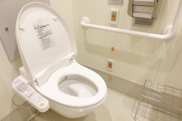 バリウム トイレ 流れ ない 人間ドックでバリウムを飲んだら注意!ウンコ流れない事件との遭遇